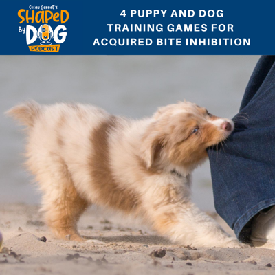 Cover art for 4 Puppy and Dog Training Games for Acquired Bite Inhibition
