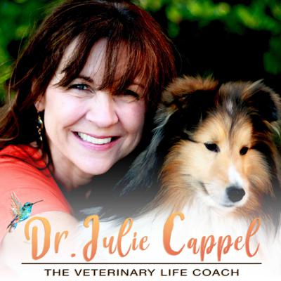 The Veterinary Life Coach Podcast with Dr. Julie Cappel