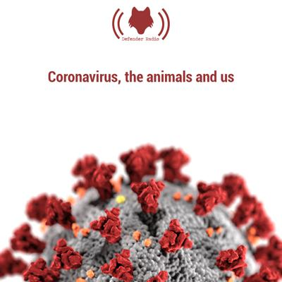 Cover art for Coronavirus, the animals and us