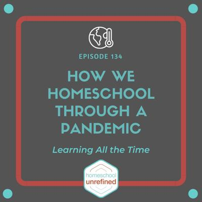 Cover art for 134: How We Homeschool Through a Pandemic: Learning All the Time