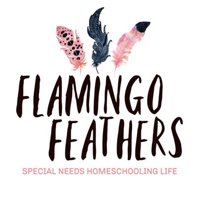 Do you homeschool a child with special needs? This podcast is for you! I'm a special needs homeschooling mom, and on the Flamingo Feathers podcast, we'll talk about curriculum choices, disability specific topics, mental and emotional health, and more! All from a Christian perspective.Our homeschooling journeys will all look different, but one thing is for sure...you will find specific, actionable tips for your homeschool, as well as the connection and community we all so desperately need.