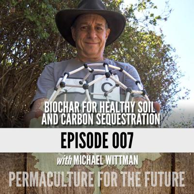 Cover art for Biochar for Healthy Soil and Carbon Sequestration