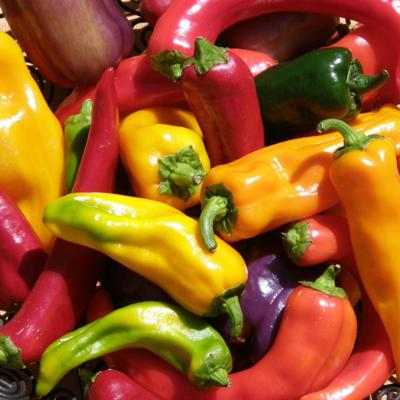 Cover art for Peppers, the Hot and the Sweet: How to Grow Them, How to Eat Them
